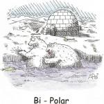 bi-polar1