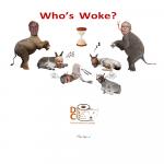 humor-times-dc-crap-whos-woke