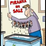 141128-Piranha-Sale