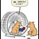 160324-hamster-fitbit