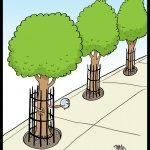 160909-tree-prisoners