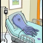 161030-octopuss-iv