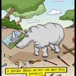 161115-rhino-portraits