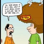161120-keebler-hair