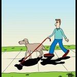 170908-shadow-dog
