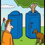 180629-Dog-Tree-Portapotty