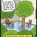 Deforestation-Support-Groups
