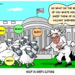 Wolff in Sheep's Clothing