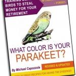 parakeet-color