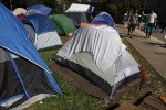 Poll: What to do about 'Occupy' campers?