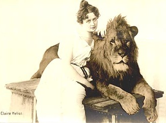 Grow up to be a lion tamer