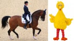 Romney, the Artful Dodger, Takes on Big Bird and the World
