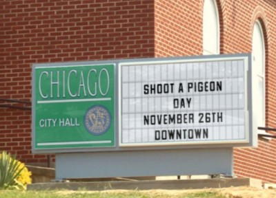 Shoot a pigeon, feed a family