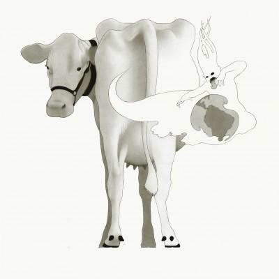 Cow Farts, methane emissions, flatulence