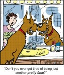 Marmaduke, Everyone's Favorite Hound