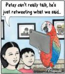 Insight on Cartoonists: Michael Capozzola