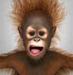 Orangutan Father of Donald Trump in 'Total Despair' after NY Primary