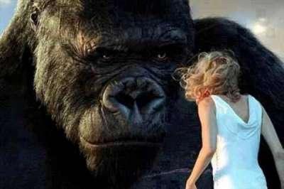 King Kong, politically correct