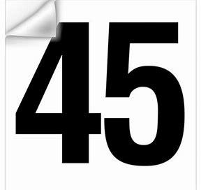45th President