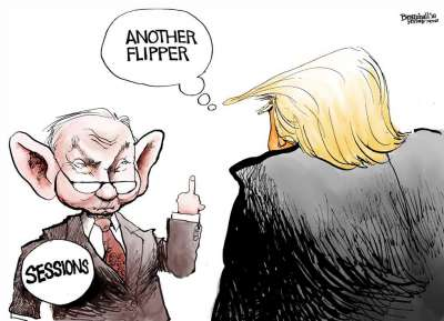 Flipper, News in Cartoons