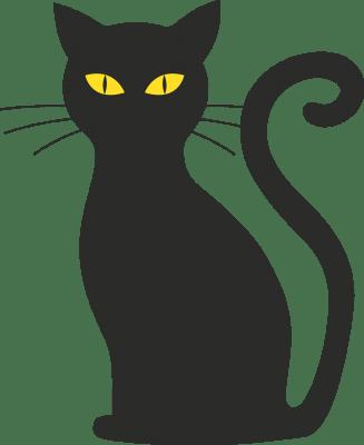 Black Cat, Bad Luck