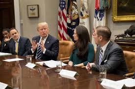 Trump Cabinet Quiz