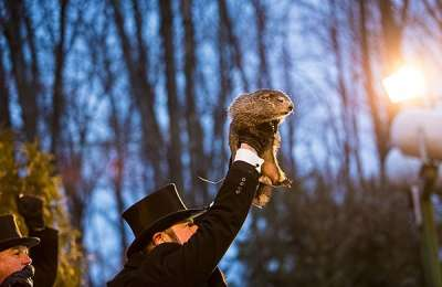 Groundhog Day Punxsutawney Phil