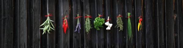 Health care, herbs