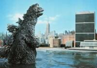 Replacing Police: Private Violence Interruption Firm Hires Godzilla